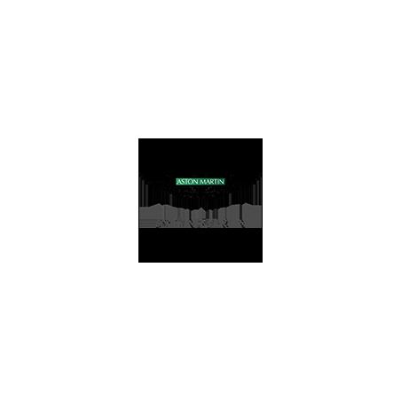 ASTON MARTIN Pellicole Oscuramento Vetri Pre-tagliate su Misura per Tutti i Modelli di Auto