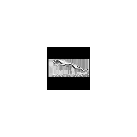 JAGUAR Pellicole Oscuramento Vetri Pre-tagliate su Misura per Tutti i Modelli di Auto