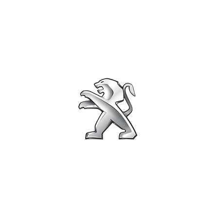 Peugeot Pellicole Oscuramento Vetri Pre-tagliate su Misura per Tutti i Modelli di Auto