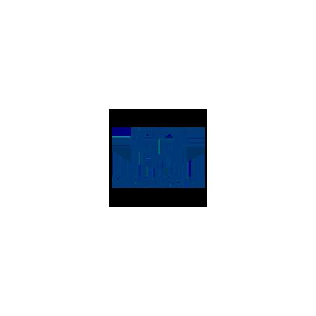 Ssangyong Pellicole Oscuramento Vetri Pre-tagliate su Misura per Tutti i Modelli di Auto